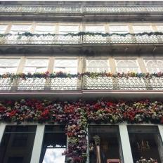 Bloom - Flowers - Building - House - Porto